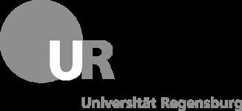 Регенсбургский университет Universitaet Regensburg