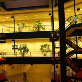 Высшее образование в Германии Университет Гамбурга внутри