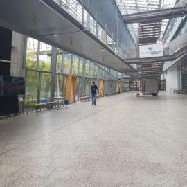 Технический университет Ингольштадта Technische Hochschule Ingolstadt