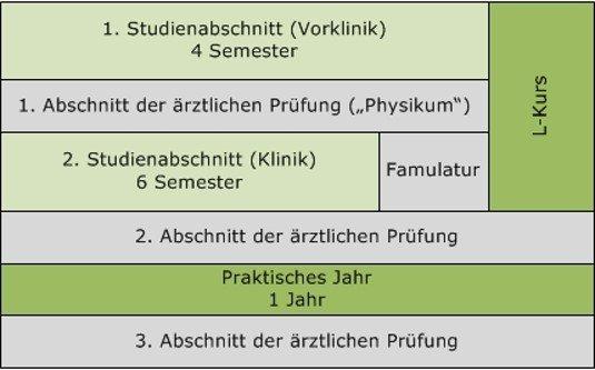 Что учить в Германии? Медицинский факультет