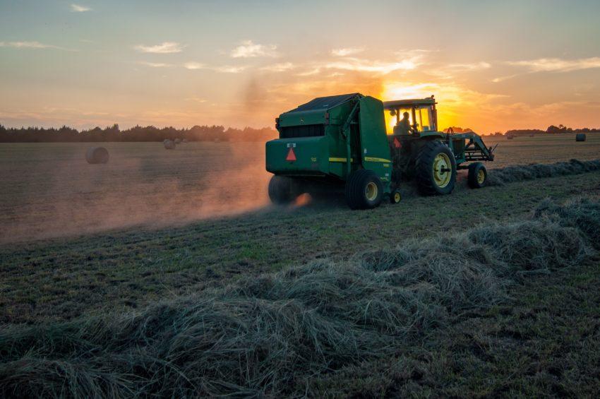 Аграрные науки | Agrarwissenschaften