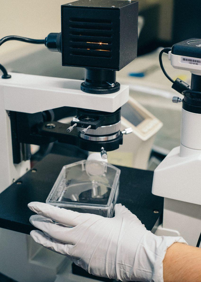 Biomedizin, Neurowissenschaften Биомедицина, нейронауки | Biomedizin, Neurowissenschaften