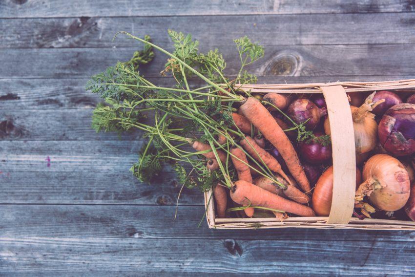 Наука о продуктах питания | Ernährungswissenschaften