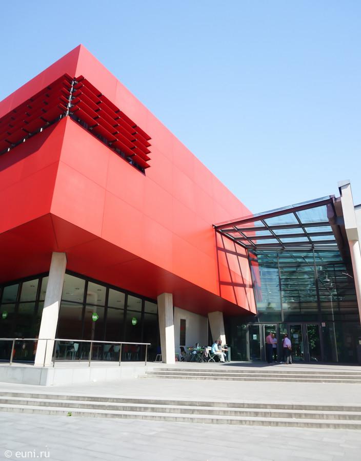 Высшее образование в Германии Hochschule für angewandte Wissenschaften München (1)