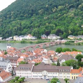 Ruprecht-Karls-Universität Heidelberg (12)