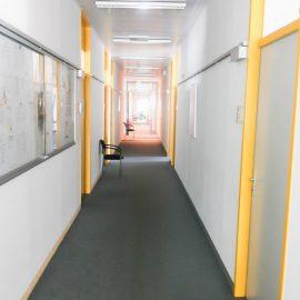 Высшее образование в Германии SDI Sprachen und Dolmetscher Institut München (27)