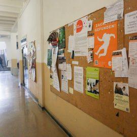 Высшее образование в Германии Universität zu Köln (15)