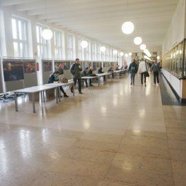 Высшее образование в Германии Universität zu Köln (17)