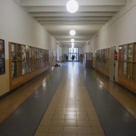 Высшее образование в Германии Universität zu Köln (25)