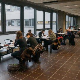 Высшее образование в Германии Universität zu Köln (30)