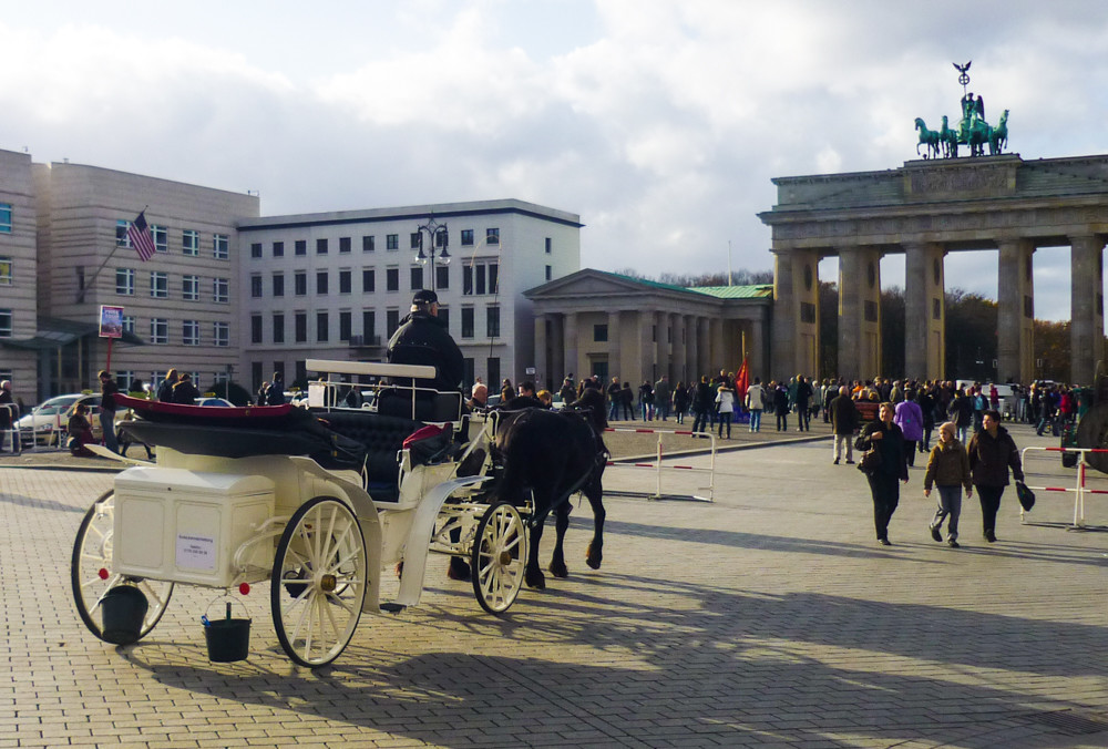 Высшее образование в Германии berlin (9)