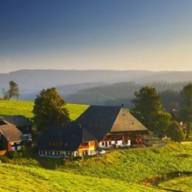 Языковые школы в Германии phoca_thumb_l_freiburg 14